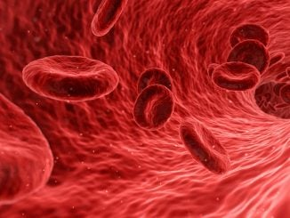 Image of red blood cells
